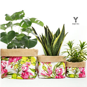 Evergreen & Optimistic Product Range from Yevvi